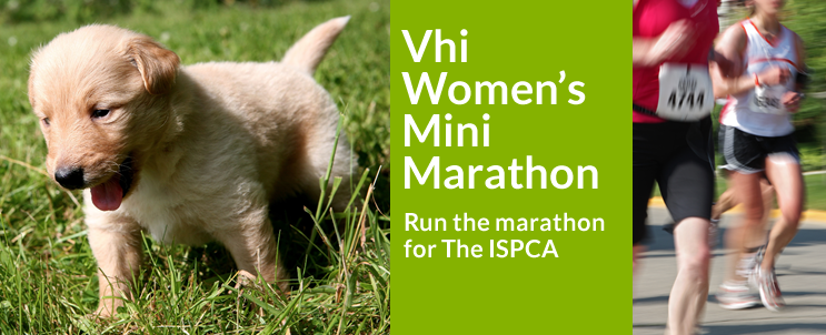 Ispca-marathon-slide