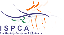 ISPCA Ireland National animal charity