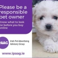 IPAAG reminds the public to beware of the pitfalls in responding to online ads for puppies