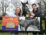ISPCA launch Hay Drive to help rescue neglected horses this winter