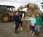 Carlow couple campaign to help the ISPCA feed starving and abandoned horses