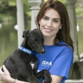 Everything you need to know if you're on Team ISPCA for this weekend's Vhi Women's Mini Marathon