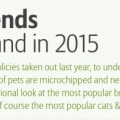 Pet Ownership Infographic