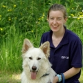 ISPCA appeal for volunteers to help care for vulnerable animals at our Centres
