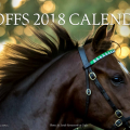 The ISPCA is delighted to be the selected charity partner for the 2018 Goff's calendar