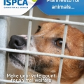 ISPCA publishes manifesto for animals ahead of General Election 2016