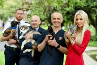 ISPCA launches SpayAware 'It's Better to Neuter' campaign encouraging pet owners to be responsible