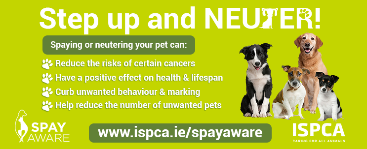 ISPCA on why to spay and neuter your pet
