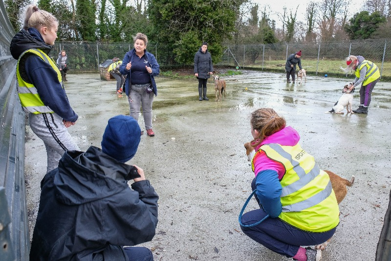 ISPCA Volunteers learn about dog training